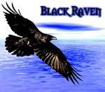 Black.Raven