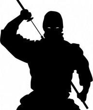 ninja85