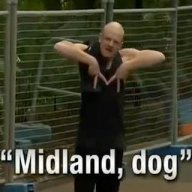 Midland Dog