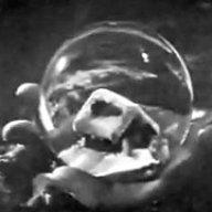 SMTB1963