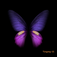 Tingang-21
