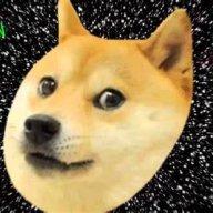 Dogeinspace