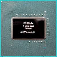 GM206-300-A1